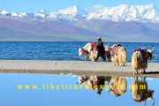 Namtso Lake,Tibet attraction, Top Lhasa Tours