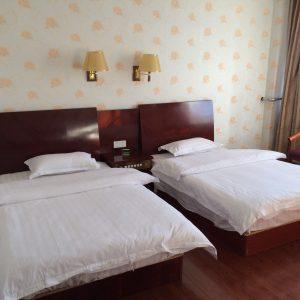Hotel in Saga-Best one is Saga hotel